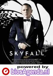 Skyfall poster, © 2012 Sony Pictures Releasing