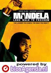 Mandela: Long Walk to Freedom poster, © 2013 Paradiso