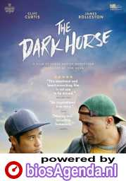 The Dark Horse poster, © 2014 Imagine