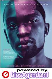 Moonlight poster, © 2016 Splendid Film