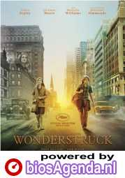Wonderstruck poster, © 2017 The Searchers