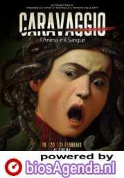 Caravaggio: The Soul and the Blood poster, copyright in handen van productiestudio en/of distributeur