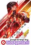 Ant-Man and the Wasp poster, © 2018 Walt Disney Pictures