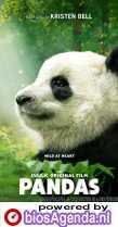 Pandas poster, copyright in handen van productiestudio en/of distributeur