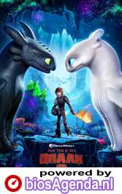 How to Train Your Dragon 3 poster, © 2019 Universal Pictures International