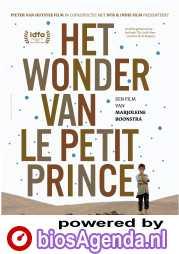 Het wonder van Le Petit Prince poster, © 2019 Cinema Delicatessen