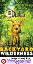 Backyard Wilderness poster, copyright in handen van productiestudio en/of distributeur